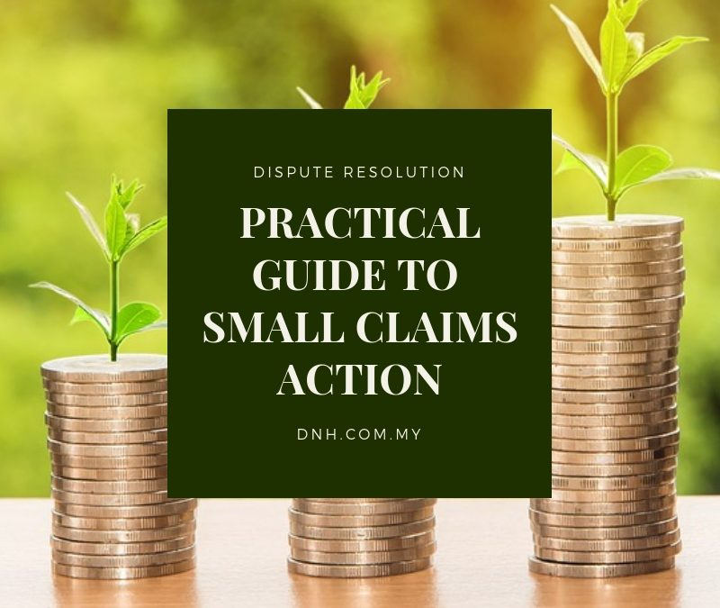 Practical Guide to Small Claims Action